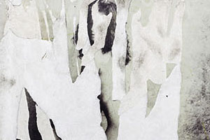 guillermo gudino art not to be seen nude women peeled-off images contemporary abstract photography hand-torn